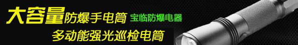 上海宝临防爆电器有限公司
